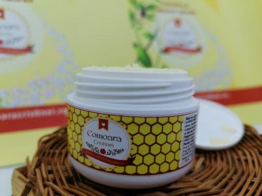 Crema naturala Nutritiva cu Q10 si LM 1