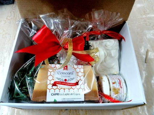 Cutii cu cadouri nat Comoaracristinei